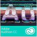 Audition + Pro Edition